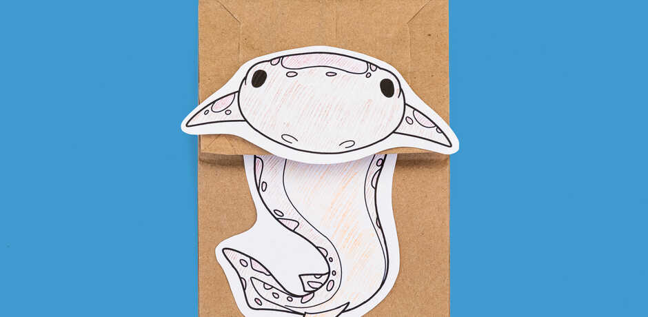 Swell shark puppet made out of a paper bag
