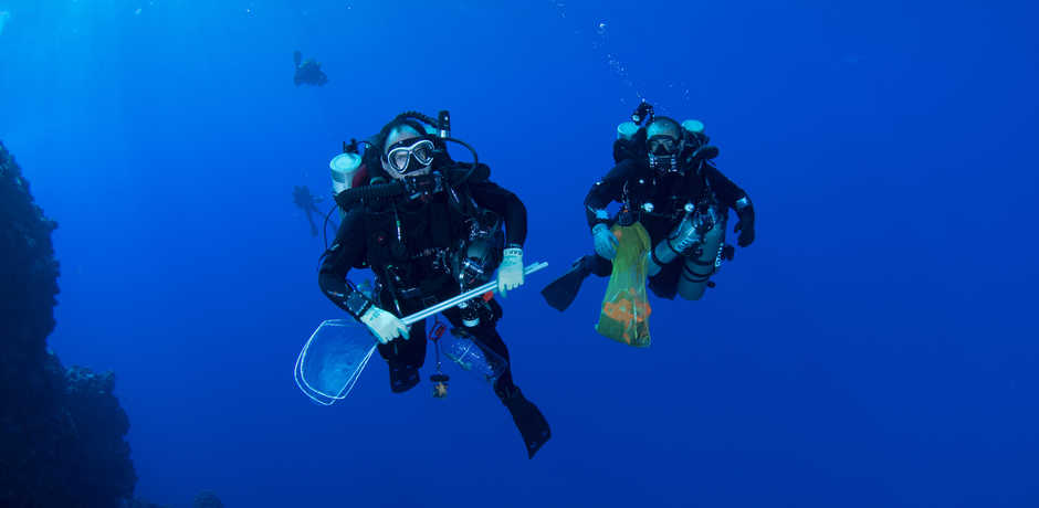 Bart Shepherd and Tyler Phelps diving the twilight zone with collection nets