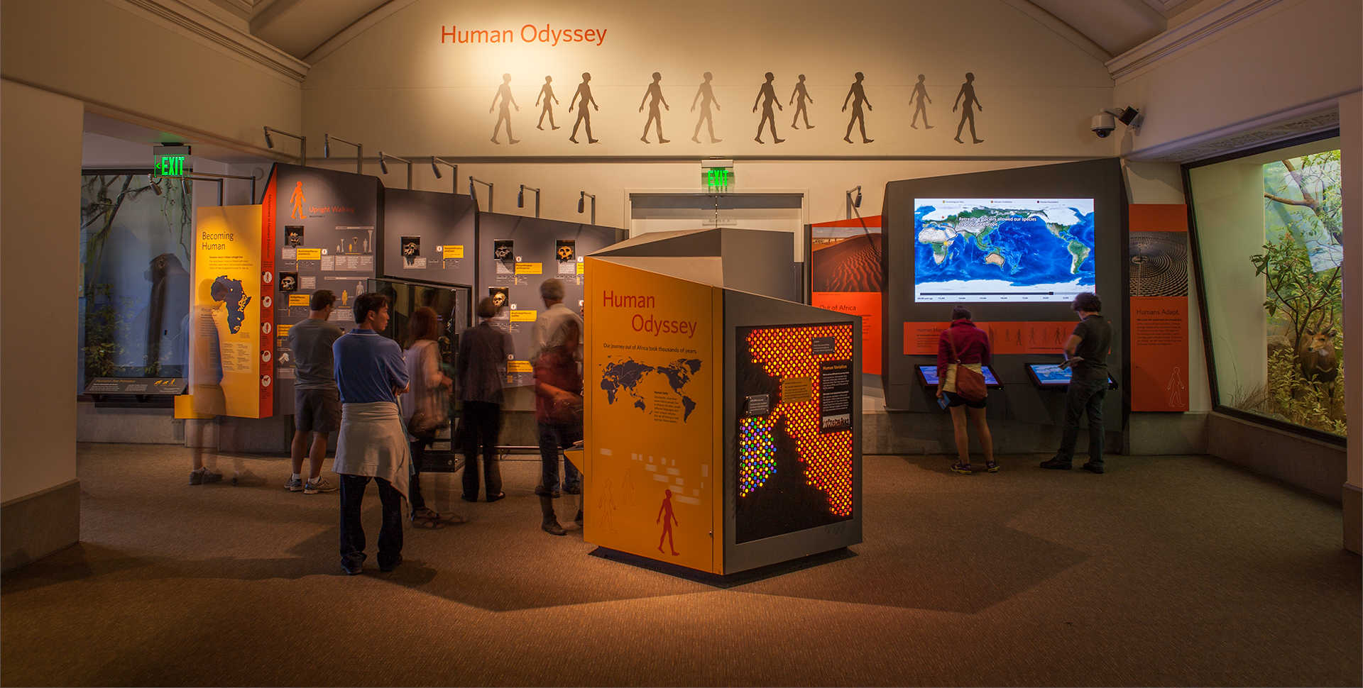 Visitors explore the Human Odyssey exhibit.