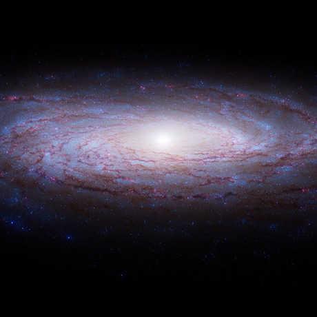 passport to the universe calacademy morrison planetarium nightlife