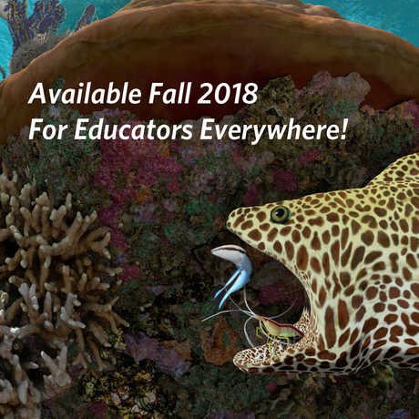 Available Fall 2018 for Educators Everywhere!
