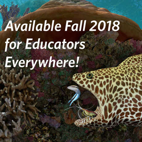 Available Fall 2018 for Educators Everywhere