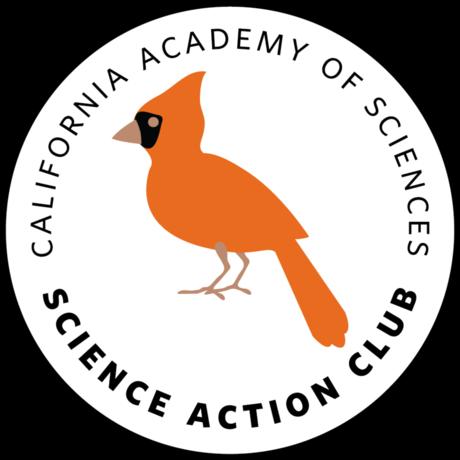 birds emblem