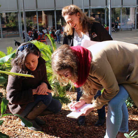 Science Action Club educators do a Bug Safari at the Academy