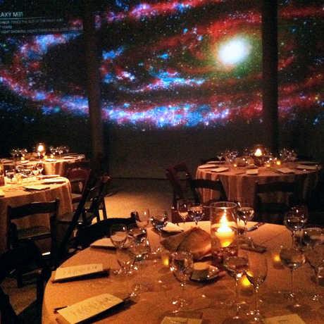 Photo: California Academy of Sciences