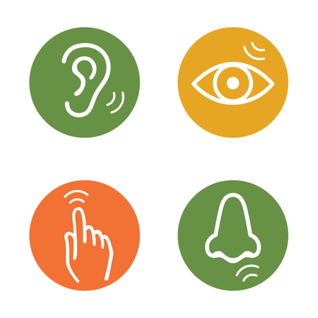 Colorful icons categorize areas of the Academy by sensory strength