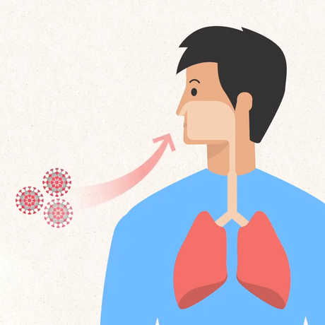 Stylized illustration of virus particles being inhaled into human lungs