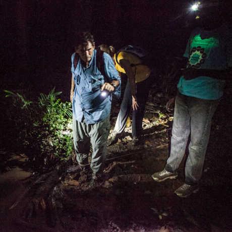Bob Drewes and team on a night-hike in São Tomé and Príncipe