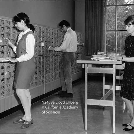 Image of Academy library staff- 1968