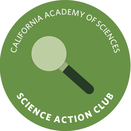 Science Action Club Nature Bundle Workbook