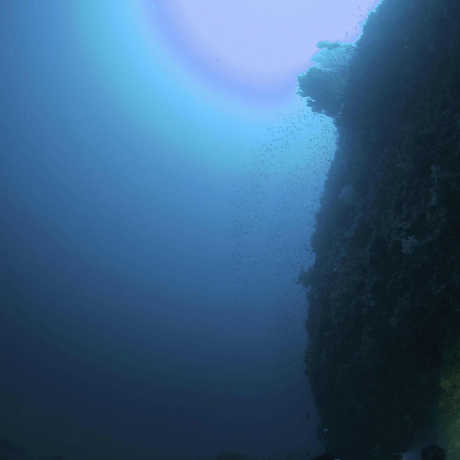 View of the surface while diving