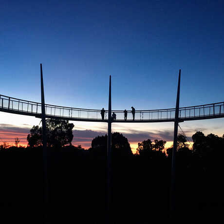 Penang Hills's rainforest canopy walkway at sunset. © Wendy Baxter