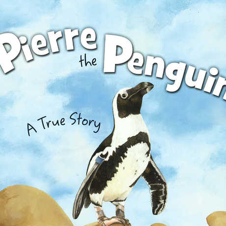 Pierre the Penguin book cover