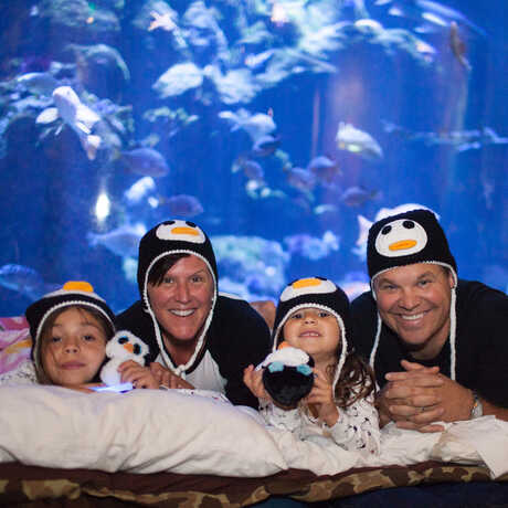 Family of 4 happily posing in their sleeping bags in front of coral reef exhibit