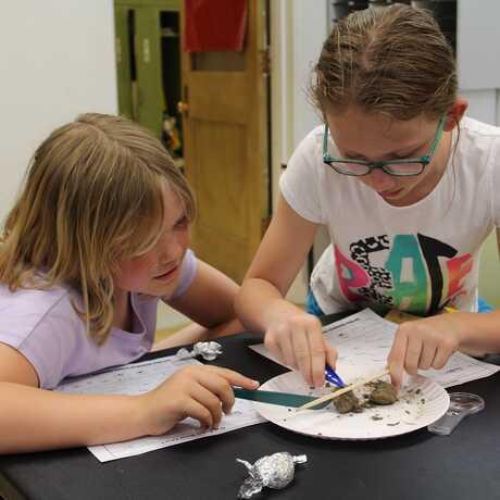 Girls dissecting an owl pellet