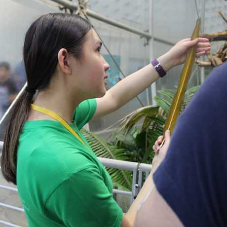 TASC youth teaches about a Macaw