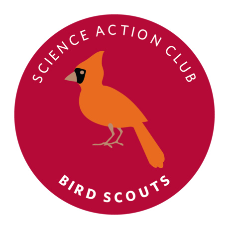 Bird Scouts Emblem