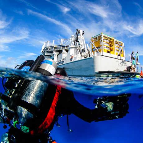 California Academy of Sciences and the Dalio Ocean Initiative