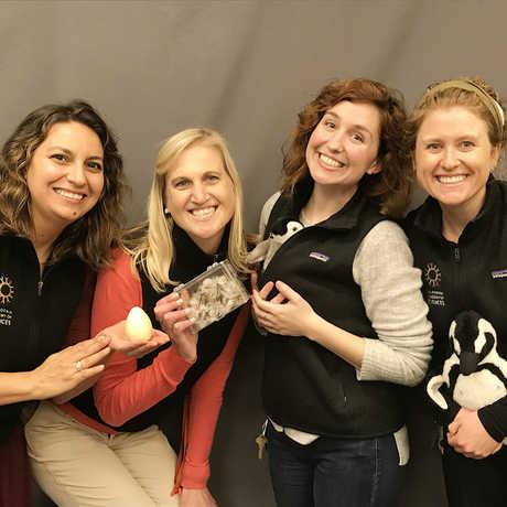 Penguin Educators