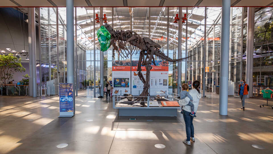 Cast of Tyrannosaurus rex wears a mask in the Academy lobby