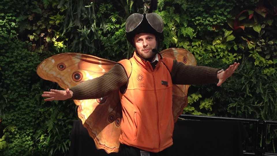 Program Presenter in butterfly costume