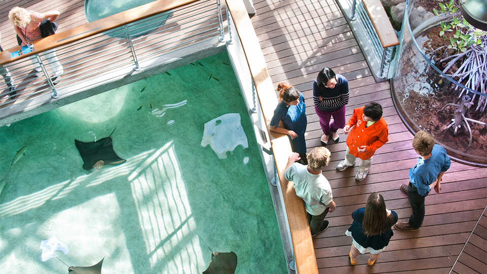 A volunteer speaks with visitors at the Reef Lagoon.